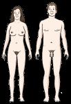 liebe-14-nackt
